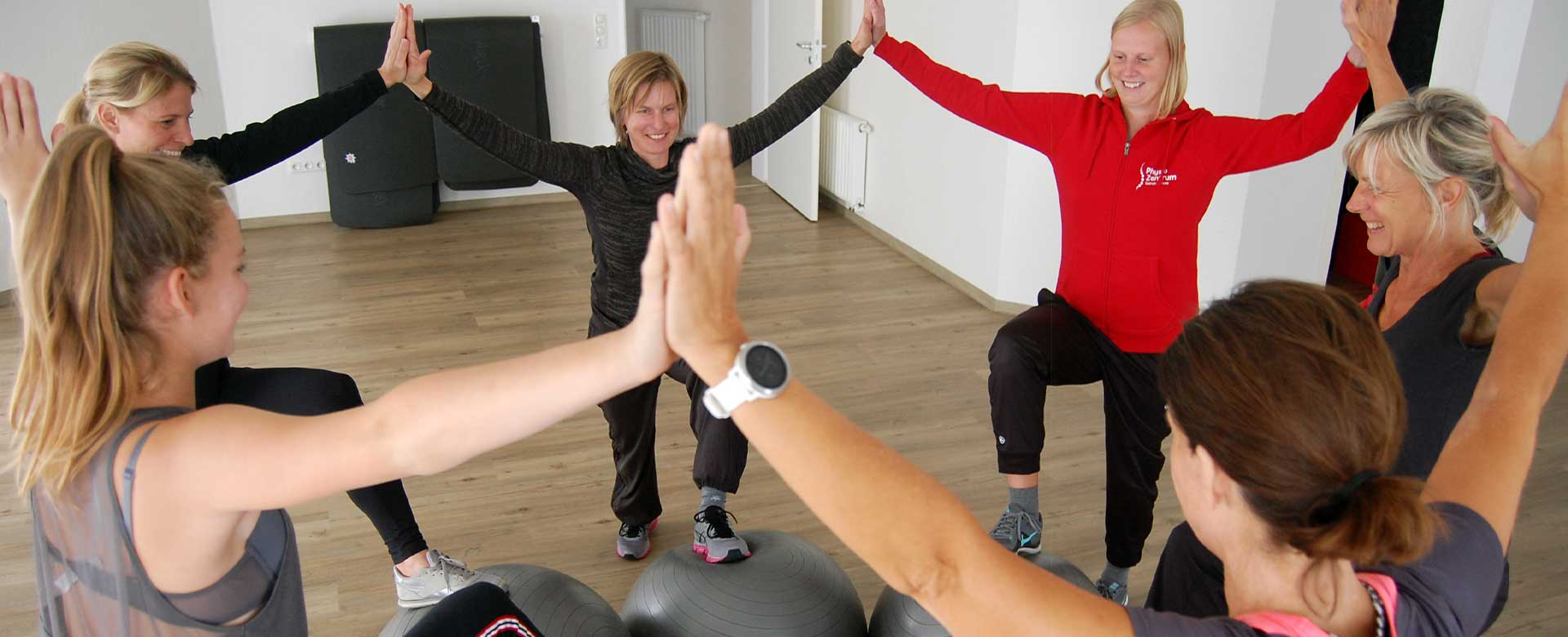 PhysioZentrum Ganderkesee Genius Rückentraining